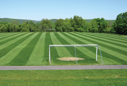 Soccer field grass Flower Background Bare Essentials Soccer Goalmouths Need Extra Attention And At Least Couple Weeks Of Rest Athletic Business Maintaining Highwear Areas On Natural Grass Fields Athletic Business