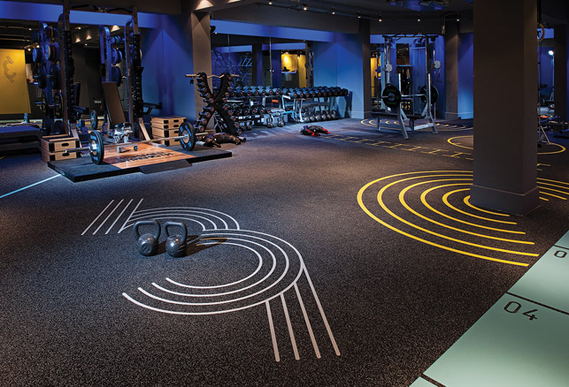 Making Room for Functional Strength Training in Mainstream Health Clubs